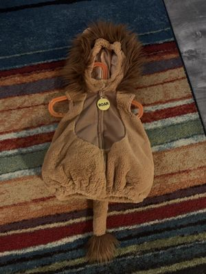 Baby Lion Costume for Sale in Philadelphia, PA