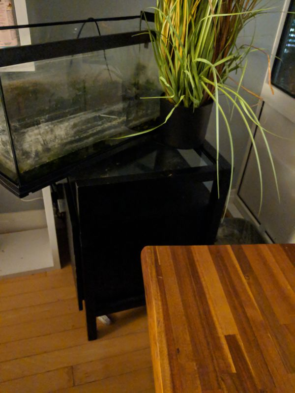 File cabinet and 20 gal tank