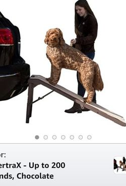 Dog Ramp for Sale in Tampa,  FL