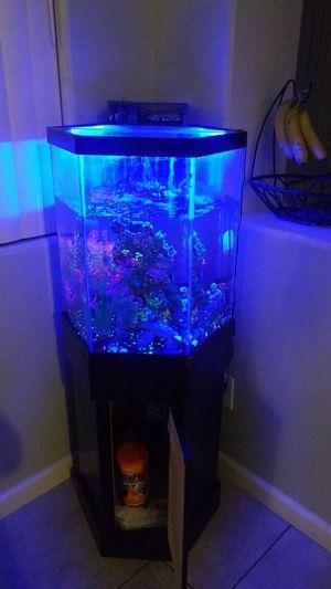 Fish tank! for Sale in Las Vegas, NV