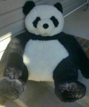 "APPROXIMATELY 30"" PANDA PLUSH for Sale in Jonesboro, AR"