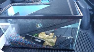 Fish tank for Sale in Fayetteville, NC