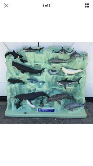 Vintage gift shop display for Monterey Aquarium for Sale in Arroyo Grande, CA