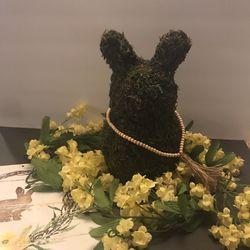 Moss bunnie for Sale in Orlando,  FL