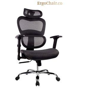 Superb Ergonomic Mesh Office Chair w/Adjustable Headrest and Armrest for Sale in Auburn, WA