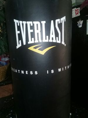 Everlast punching bag for Sale in Hollywood, FL
