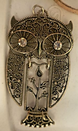 Owl necklace charm for Sale in VA, US