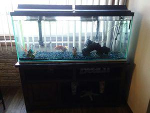 Fishtank for Sale in Grand Island, NE