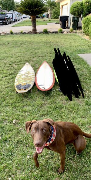 Surfboards for Sale in Modesto, CA
