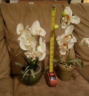 Decorative Flowers for Sale in Sierra Vista, AZ