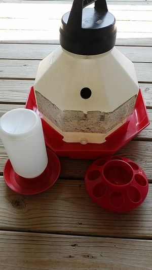 Water containers and chick feeder for Sale in Quitman, AR