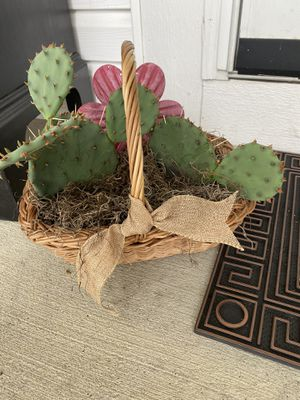 Cactus cacti for Sale in Westerville, OH