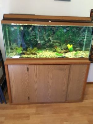 50 gal aquarium all equipment $100 obo including cabinet for Sale in Shelton, WA