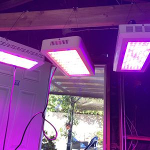 LED grow lights three for 300 for Sale in Tujunga, CA