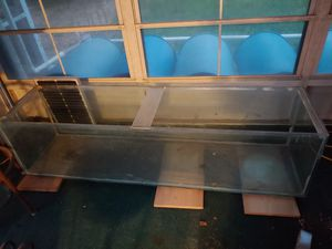 100 gallon glass tank for Sale in Clearwater, FL