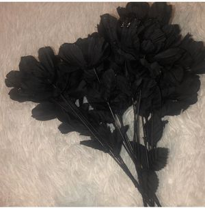 Black roses for Sale in Oak Park, MI