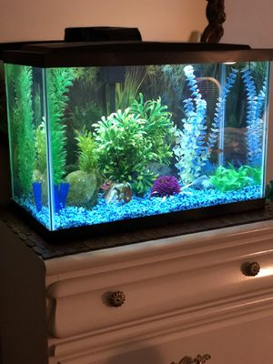 Fish aquarium tank 16 gallon fresh water filter, light and heater included for Sale in Moreno Valley, CA