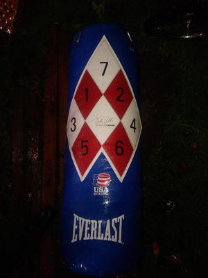 BOXING BAG BY EVERLAST -SUPER NICE PUNCHING BAG !! SWEET DEAL!! for Sale in Tacoma, WA