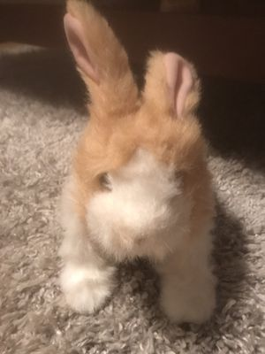 FurReal Friends Bunny toy for Sale in Scottsdale, AZ