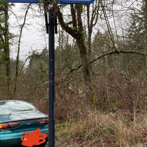 CHEAP BASKETBALL HOOP W/ NEW NET for Sale in Molalla, OR