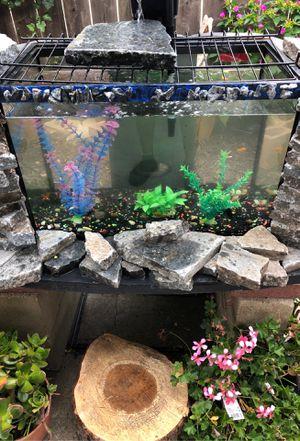 Fish tank 25g for Sale in Hayward, CA