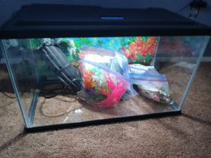 10 gallon fish tank with light for Sale in Hesperia, CA