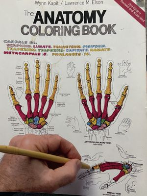 The Anatomy Coloring Book for Sale in Scottsdale, AZ
