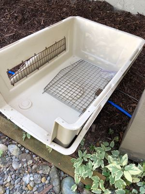 Dog Kennel for Sale in Shoreline, WA