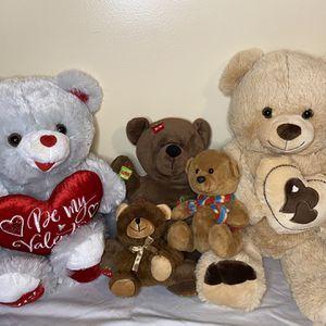 5 Teddy Bear Pack. for Sale in Hallandale Beach, FL