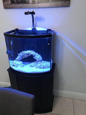 Saltwater tank for Sale in Hialeah, FL