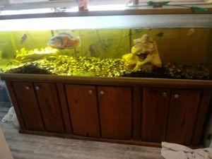 300 gallon complete aquarium w/fish for Sale in San Antonio, TX