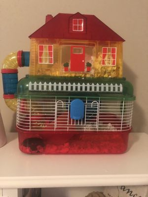 Sweet hamster for sale for Sale in Greenville, SC