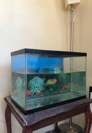 Fish tank / set up for Sale in San Diego, CA