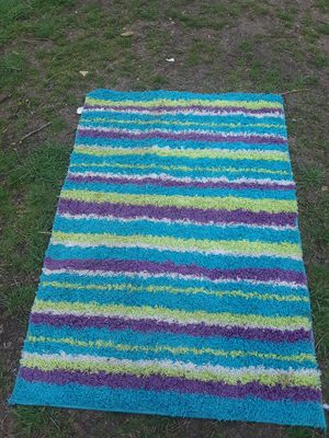 Shaggy Rug $25.00 cash only (serious buyers) for Sale in Dallas, TX