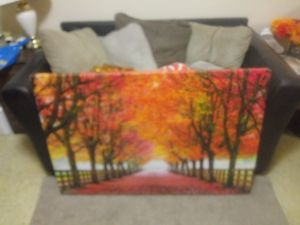 Canvas picture for Sale in Quincy, IL