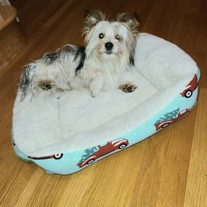 Reversible Sherpa, Red Truck Flannel Dog Bed for Sale in Bothell, WA