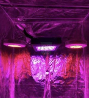 Grow light G8 LED with 2 booster lights Dorm Grow for Sale in North Las Vegas, NV