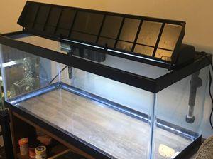 20 Gallon Aquarium for Sale in Methuen, MA