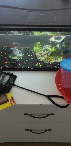 10 Gallon Fish Tank Aquarium With Decorations, Rocks And Food for Sale in Scottsdale,  AZ