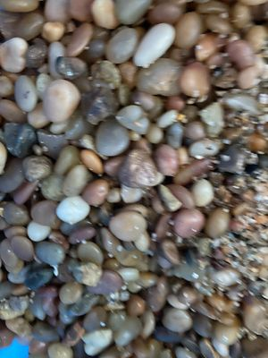 Aquarium fish tank gravel/rocks for Sale in Honolulu, HI