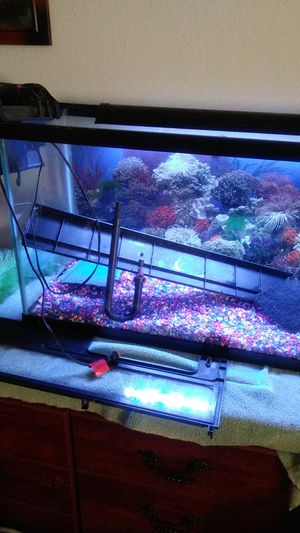 30gal fish tank every thing with it for Sale in Oklahoma City, OK