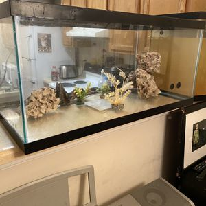 Fish Tanks for Sale in Newport News, VA