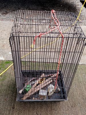 Real bird cage and some assessories for Sale in Tacoma, WA