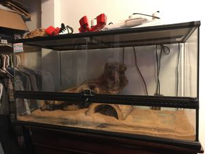 40 gallon reptile tank with all accessories for Sale in Chicago, IL