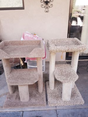 Cat Towers for Sale in Lodi, CA