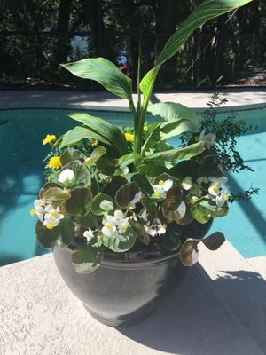Flower arrangements, pots, flowers, flower container for Sale in Orlando, FL