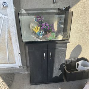 Fish Tank 20g for Sale in Sacramento, CA