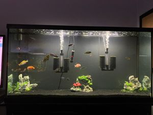Fish tank for Sale in Del Valle, TX