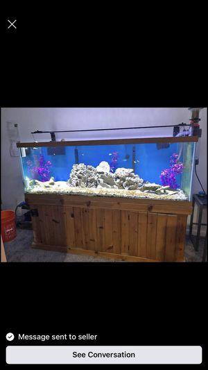 200 gallon fish tank for Sale in Baltimore, MD