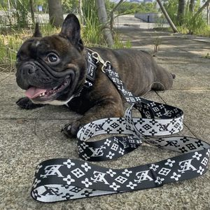 Popular Dog Leash for Sale in Los Angeles, CA